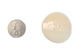 "1.5"" Clam Shell Button - 491-1.5 (M3)"