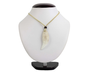 Realistic Bear Tooth Necklace: 1-Tooth