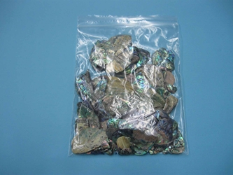 Paua Shell Pieces: Satin: Unsorted (lb)