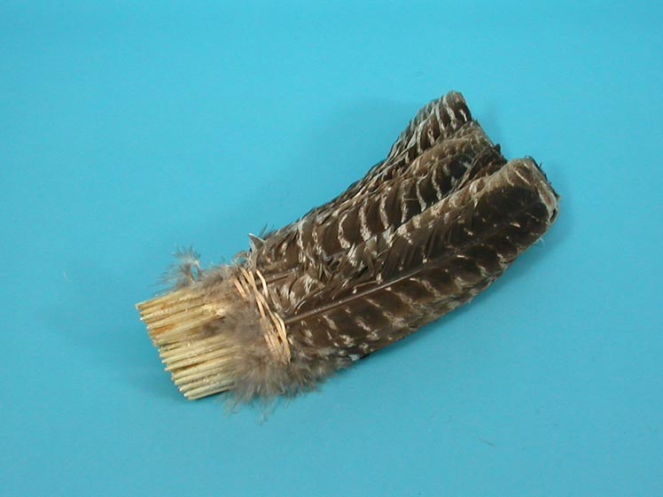 Bronze Barred Turkey Feather