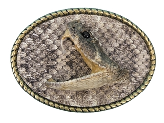 Real Rattlesnake Belt Buckle: Single Striker