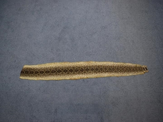 "Rattlesnake Skin with No Rattle: Assorted (55"" to 61"")"