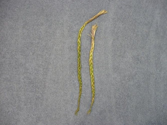 "Non-Native Sweetgrass Braids: 18""+"