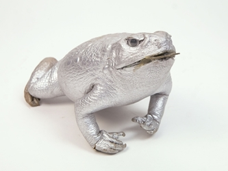 Lucky Cane Toad: Small with Coin: Silver