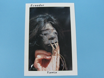Shrunken Head Post Card - Tsantsa