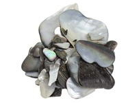 Black Lip Mother of Pearl Shell Pieces: Satin: Unsorted (1/4 lb)