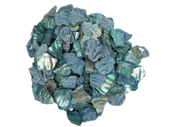 African Abalone Pieces: Blue (kg)