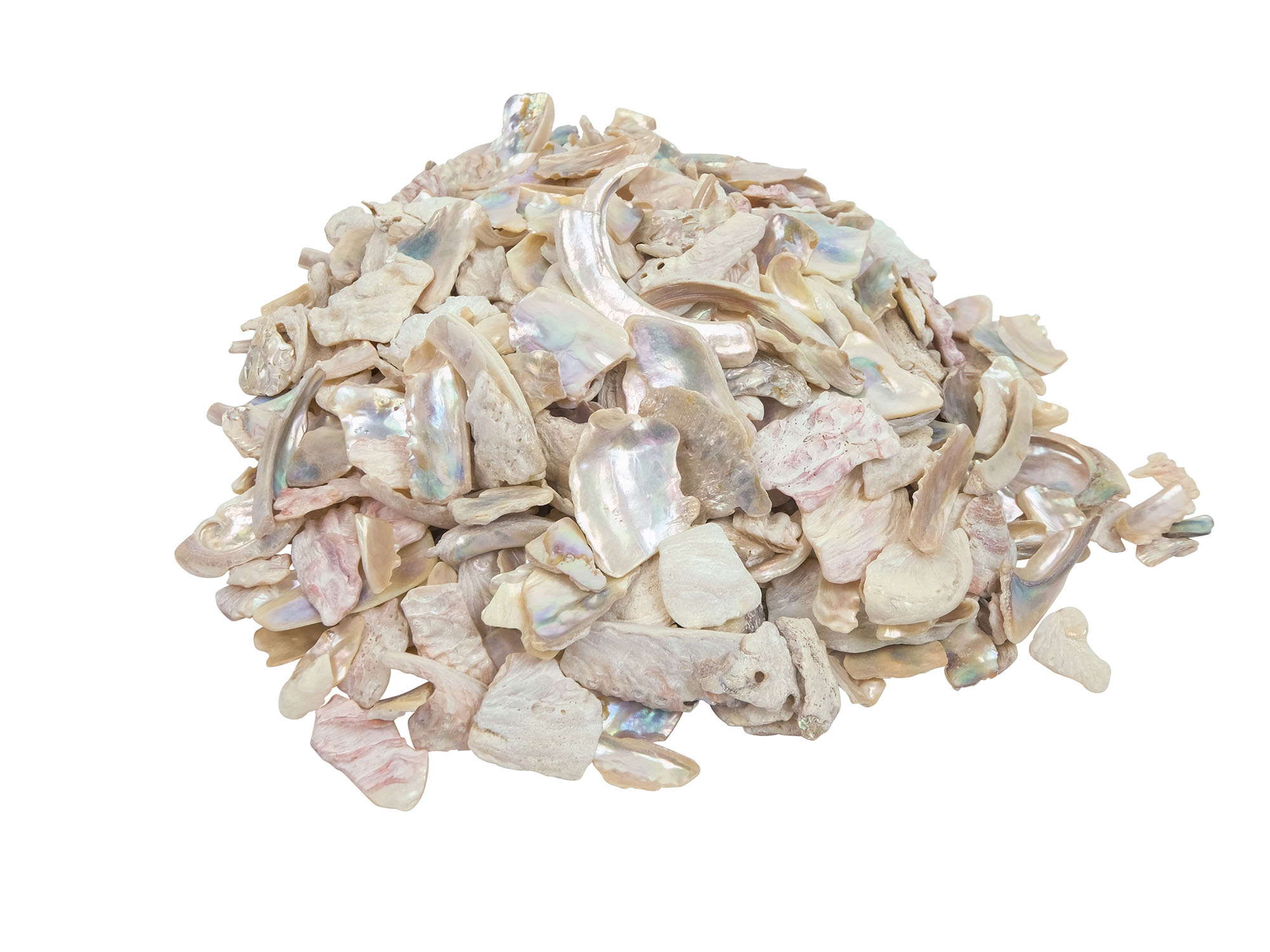 1-kg bag 220-TP-10-BW Bleached White African Abalone Shell Pieces: 10mm size 10UB 2.2 pounds