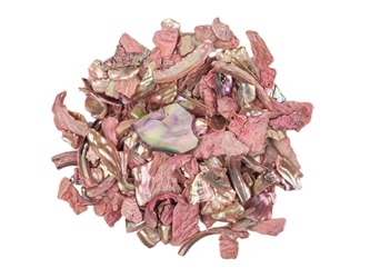 African Abalone Pieces: Assorted Sizes: Red (kg)