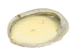 Abalone Shell Candle: Citronella - 278-51 (10UB)