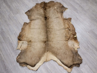 Elk Hide: #1: Assorted elk skins