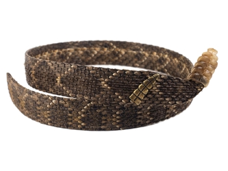 "1"" Real Rattlesnake Hat Band with Rattle and Rattle Pin rattlesnake hatbands"