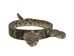 "1"" Real Rattlesnake Hat Band with Rattle and 2 Heads (Closed Mouths) - 598-HB215 (K19)"