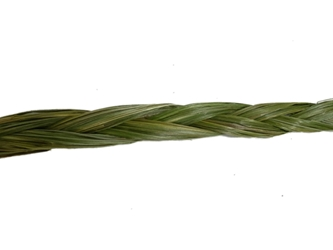 Ojibwa Sweetgrass Braid