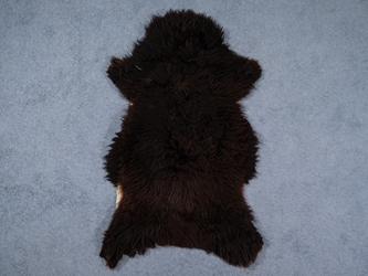 Racka Sheepskin: Blacky Brown: Gallery Item