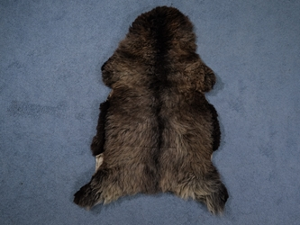 Racka Sheepskin: Gray: Gallery Item