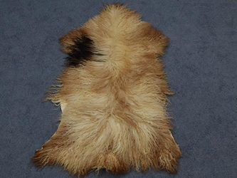 Racka Sheepskin: Multi-Color: Gallery Item