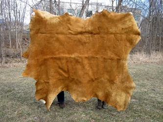 Non-Native Smoked Moosehide: Gallery Item