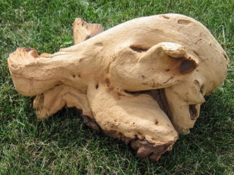 Driftwood: Large (4-7 lbs): Gallery Item