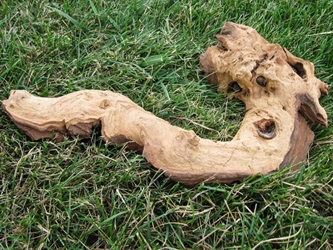 Driftwood: Small (0-2 lbs): Gallery Item