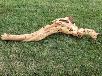 Driftwood: Extra Large (7+ lbs): Gallery Item