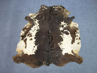 Jumbo Calf Skins with Fine Hair: Gallery Item