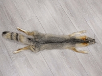 American Gray Fox Skin with Feet: Gallery item