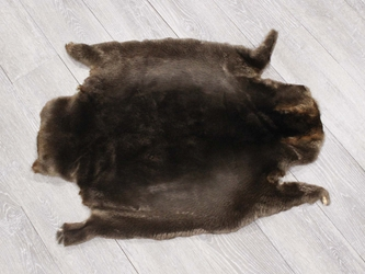 Sheared Beaver Skin: Gallery Item