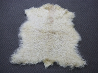 Angora Goatskin: #1: X-Large: Multi-Color: Gallery Item
